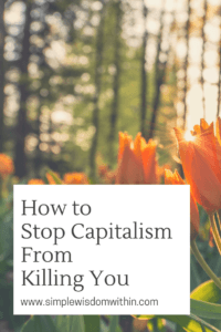 How to stop capitalism from killing you
